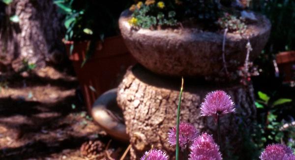 patio-pots