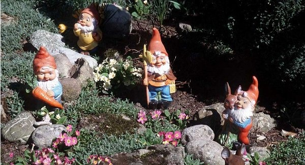 gnomes-600x325